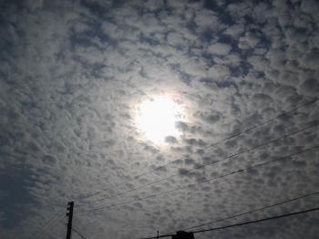 The charm of the sun