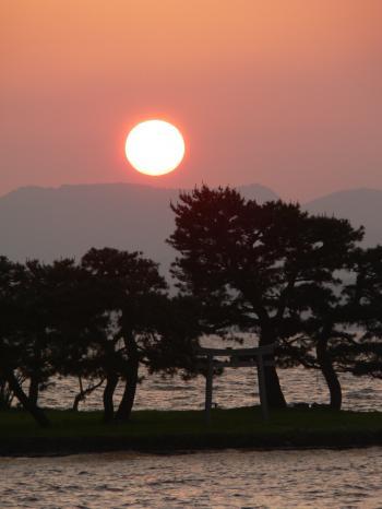 The sun setting behind the Japanese pines on Yomegashima Island