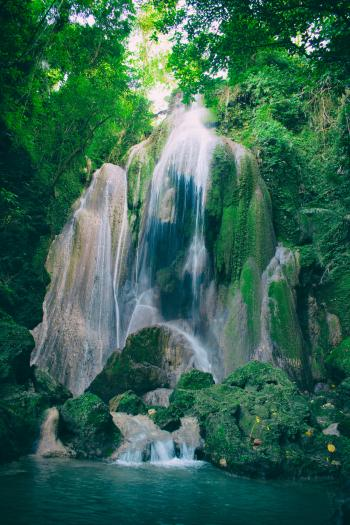 Time Lapse Photography of Waterfalls Between Tall Trees