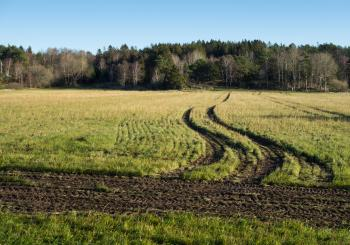 Tractor tracks in a field in Gåseberg
