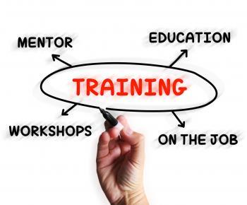 Training Diagram Displays Mentorship Education And Job Preparation