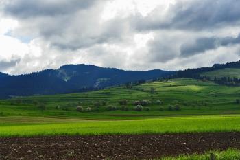 Transylvanian Land II.