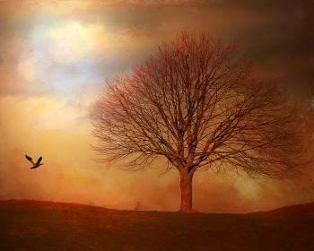 Tree and bird painting