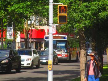 TTC bus, The Esplanade, 2016 06 09 -f
