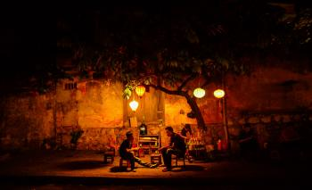 Two People Sitting Underneath Green Tree during Night Time