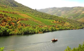 Typical Rabelo Boat Cruising Along the Douro River - Douro Valley