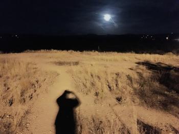 Under a Bright Moon