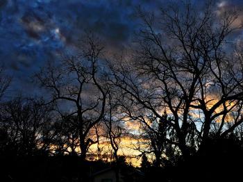 Under A Dreamer's Sky