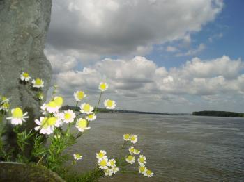 Under Sky, over river
