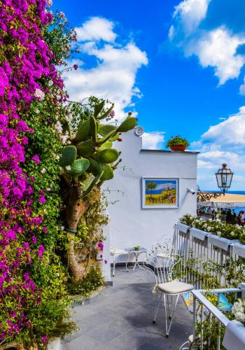 Veranda Surrounded by Green Cactus and Pink Bougainvillea