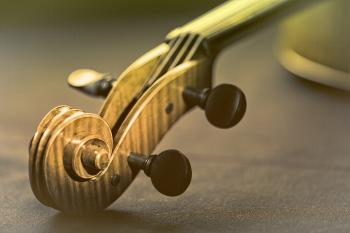 Violin - Scroll and Pegbox Close-Up - Retro Looks