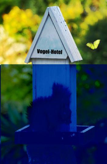 Vogel Hotel