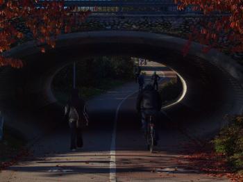 Walker and biker