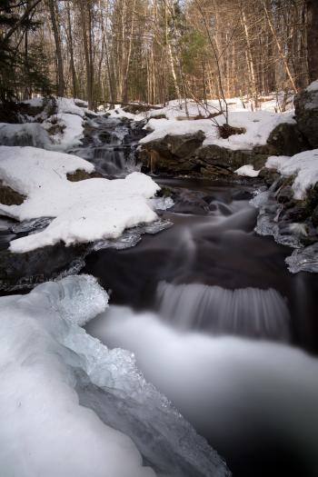 Water Flowing Through Snow Covered Forest