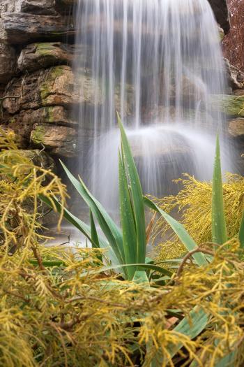 Waterfall Foliage - HDR