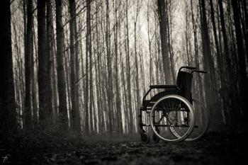 Wheelchair in the woods