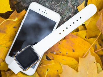White Apple Products