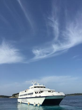 White Cruiser Ship on Body of Water during Daytime