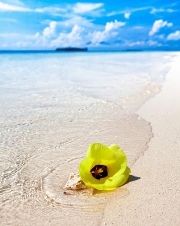 White Sand Beach