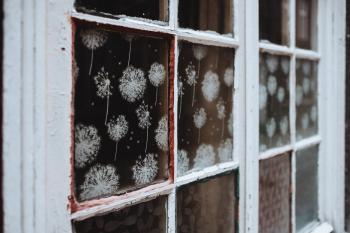 White Wooden 6-pane Window