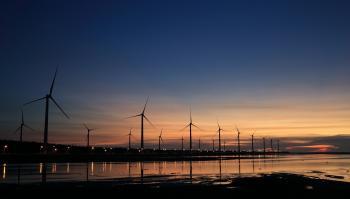 Windills on Shore