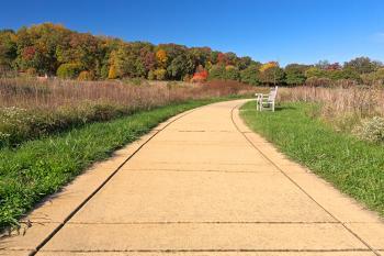 Winding Autumn Arboretum Path - HDR