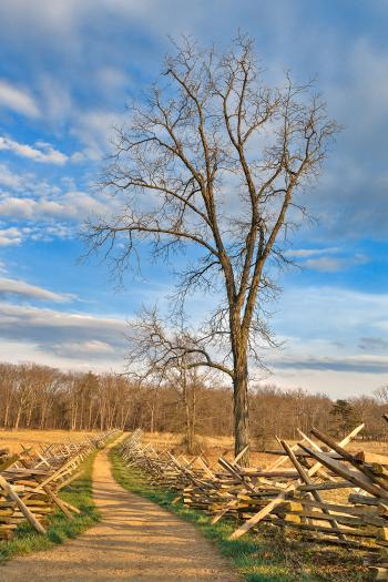 Winding Gettysburg Trail - HDR