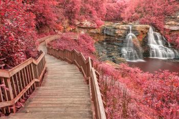 Winding Pink Fantasy Falls - HDR
