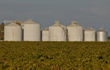 Wine Processing Tanks