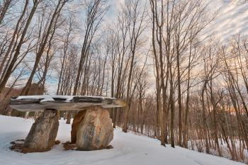 Winter Dolmen Forest - HDR