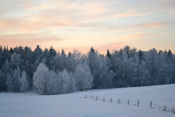 Winter evening in countryside
