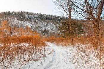 Winter McDade Trail - HDR