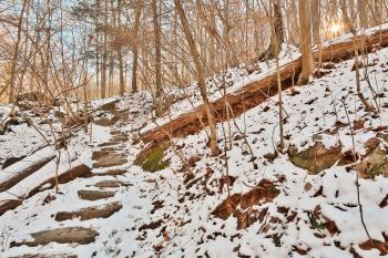 Winter Sun Step Trail - HDR