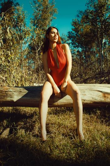Woman in Red Dress Sitting on a Log