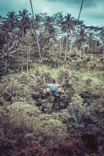 Woman Sitting on Wood Plank in Zip-line