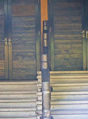 Wooden Exotic Door