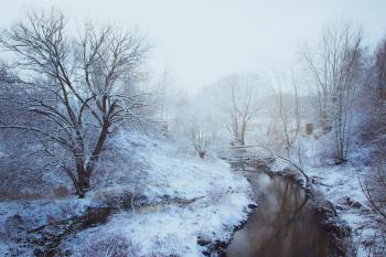 Woodland Stream Covered With Snow