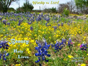 Worship with Holy Lives