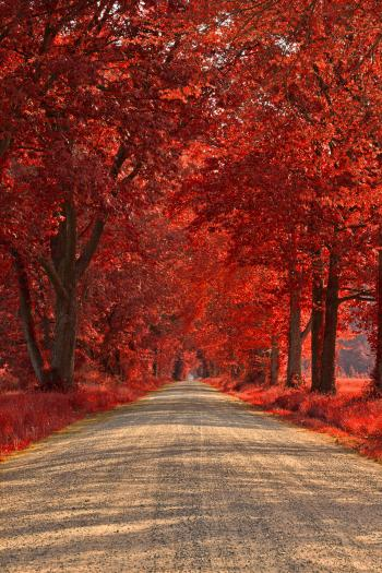 Wye Island Ruby Road - HDR