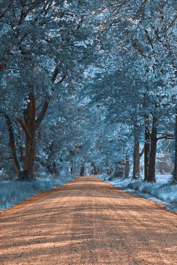 Wye Island Sapphire Road - HDR