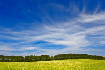 Wye Island Sky Field - Eco Harmony HDR