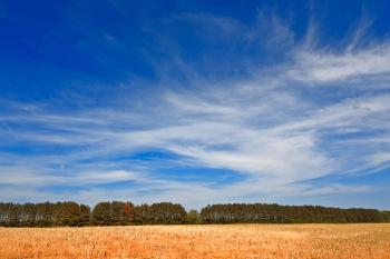 Wye Island Sky Field - HDR