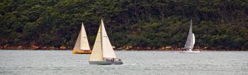 Yachts from Garden Island
