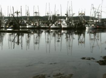 yaquina bay boats