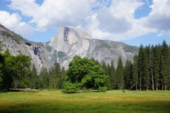 Yosemite, CA (Unedited)