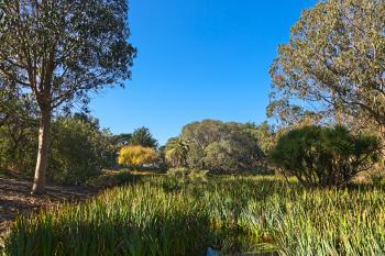 Zoo Marsh Scenery - HDR