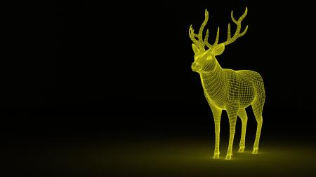 3D Deer Wireframe