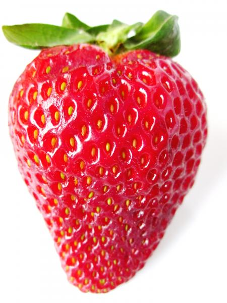 A single strawberry