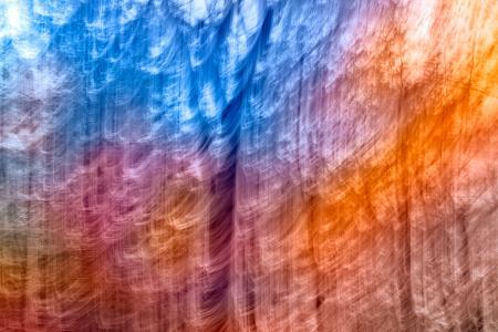 Abstract Rainbow Forest Streaks