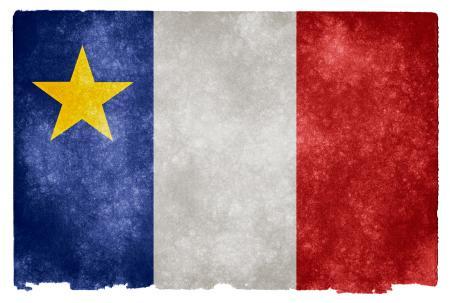 Acadian Grunge Flag